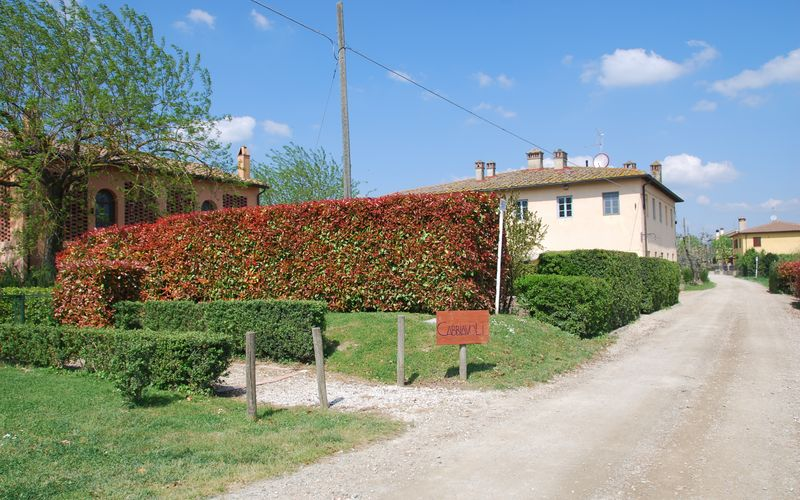 Casa Marcello - Fico